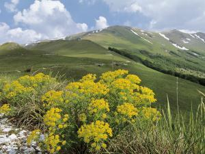 Panoramic View of a Mountain Range, Mt Sibillini, Monte Sibillini National Park, Marches, Italy by C. Sappa