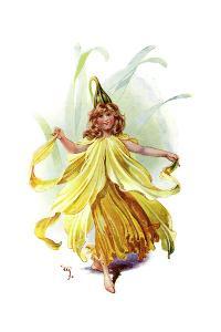 The Daffodil, 1899 by C Wilhelm