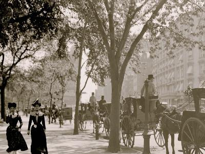 Cab Stand at Madison Square, New York--Photo