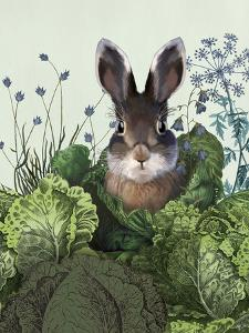 Cabbage Patch Rabbit 4