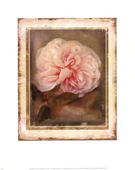 Cabbage Roses-Linda Maron-Art Print