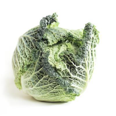 Cabbage-Cristina-Photographic Print