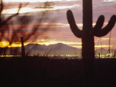 Cacti Silhouetted at Dusk as the Sun Sets Behind Mountains in Arizona-xPacifica-Photographic Print