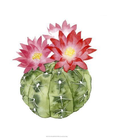 Cactus Bloom III-Grace Popp-Giclee Print