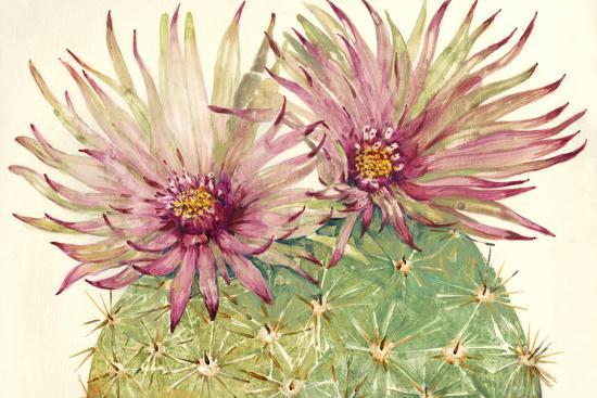 Cactus Blossoms I-Tim OToole-Art Print