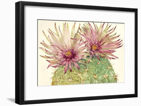 Cactus Blossoms I-Tim OToole-Framed Art Print