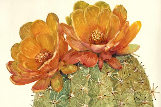 Cactus Blossoms II-Tim OToole-Art Print