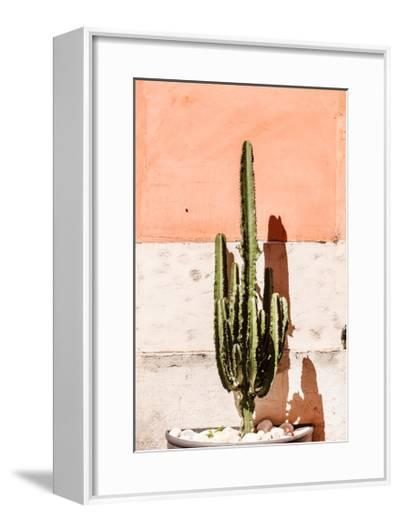 Cactus near Wall-Maksim Shebeko-Framed Art Print