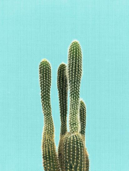 Cactus On Blue-LILA X LOLA-Art Print