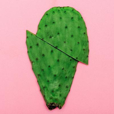 Cactus on Pink Background. Minimal Design Photo-Evgeniya Porechenskaya-Photographic Print