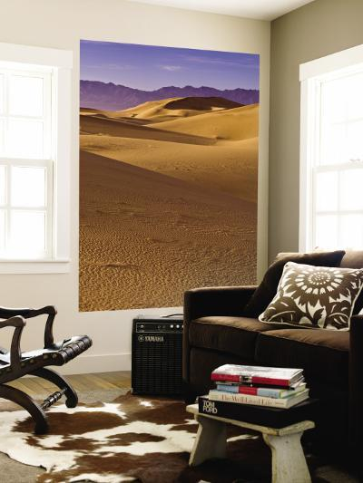Cadiz Dunes at Sunrise, Calumet Mountains in Distance in Mojave Desert-Witold Skrypczak-Wall Mural