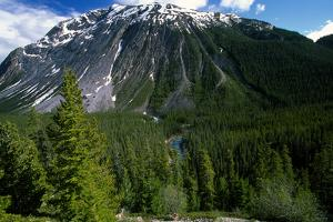 A Scenic Landscape in the Canadian Rocky Mountains by Cagan Sekercioglu