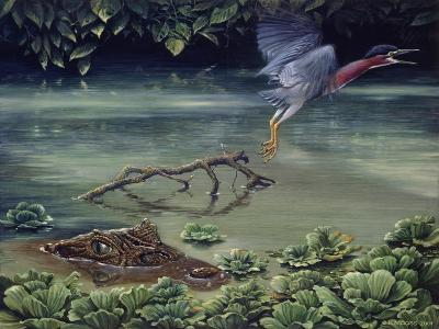 Caiman and Green-Backed Heron-Harro Maass-Giclee Print