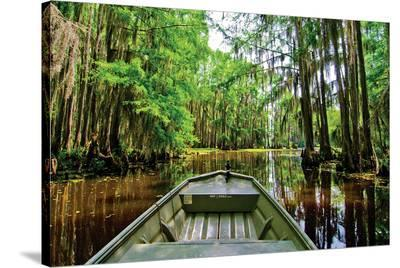 Cajun Country II--Stretched Canvas Print