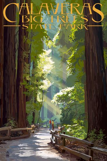 Calaveras Big Trees State Park - Pathway in Trees-Lantern Press-Art Print