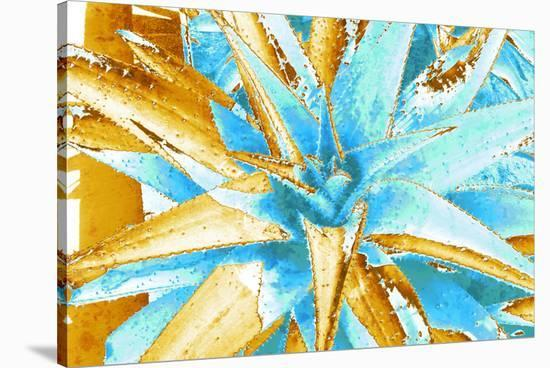 California Beauty--Stretched Canvas Print
