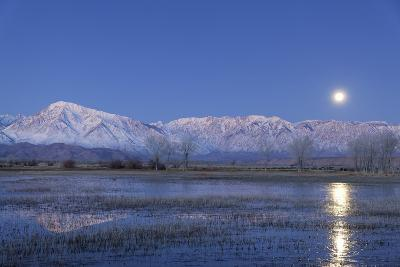 California, Bishop. Full Moon over Sierra Crest-Jaynes Gallery-Photographic Print