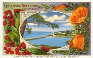 California Christmas, Torrey Pines