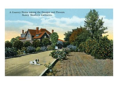 California - Country Home Among Oranges and Flowers Scene-Lantern Press-Art Print
