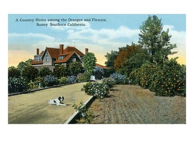 https://imgc.artprintimages.com/img/print/california-country-home-among-oranges-and-flowers-scene_u-l-q1gpagr0.jpg?p=0
