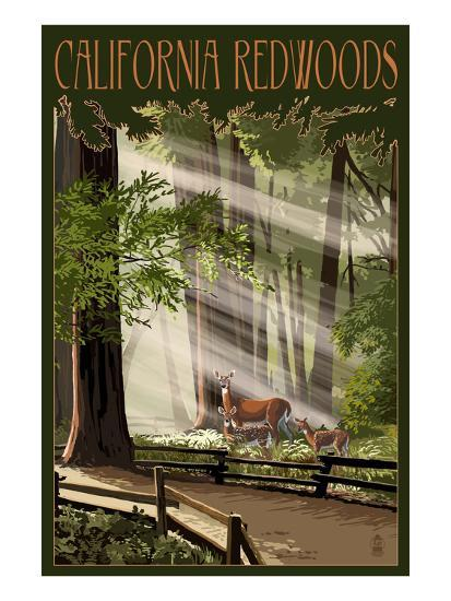 California - Deer and Fawns in Redwoods-Lantern Press-Art Print