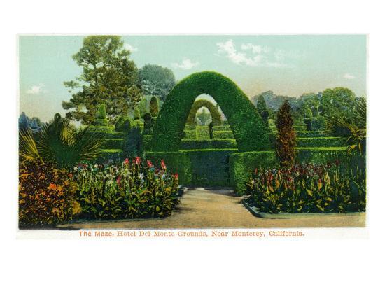 California - Hotel Del Monte View of the Maze Near Monterey-Lantern Press-Art Print