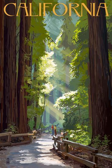 California - Pathway in the Forest-Lantern Press-Wall Mural