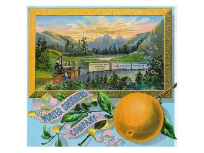 https://imgc.artprintimages.com/img/print/california-porter-brothers-company-brand-citrus-label_u-l-q1gohkw0.jpg?p=0