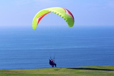 California, San Diego, Torrey Pines Gliderport. Hang Gliders Landing-Steve Ross-Photographic Print