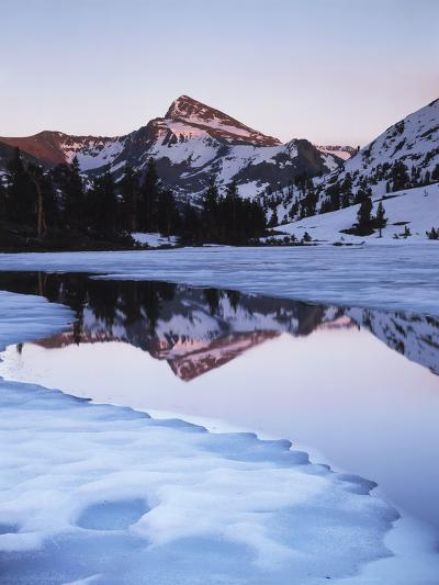 California, Sierra Nevada Mts, Dana Peak Reflecting in a Frozen Lake-Christopher Talbot Frank-Photographic Print
