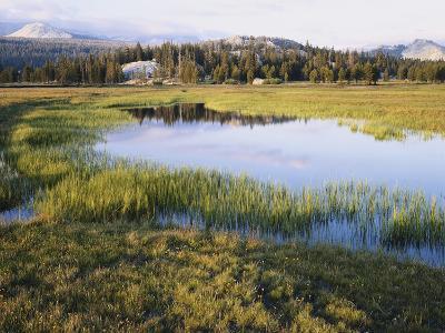 California, Sierra Nevada, Yosemite National Park, the Tuolumne River Lake-Christopher Talbot Frank-Photographic Print