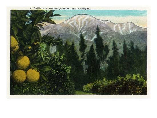 California - View of a Californian Anomaly, Snow-Capped Mountains and Orange Groves, c.1921-Lantern Press-Art Print