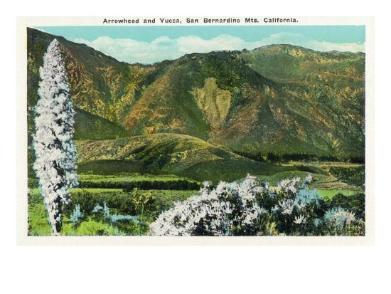California - View of Flowering Yucca and the Arrowhead in the San Bernardino Mountains, c.1921-Lantern Press-Art Print
