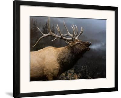 Call of Autumn-Daniel Smith-Framed Art Print