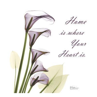 Calla Lilies Home-Albert Koetsier-Art Print
