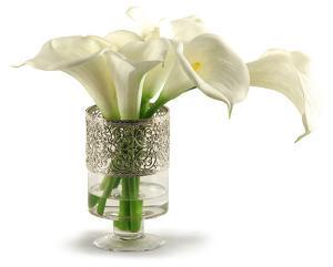 Calla Lilies in Filigree Urn