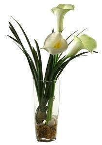 Calla Lilies in Hex Glass Vase