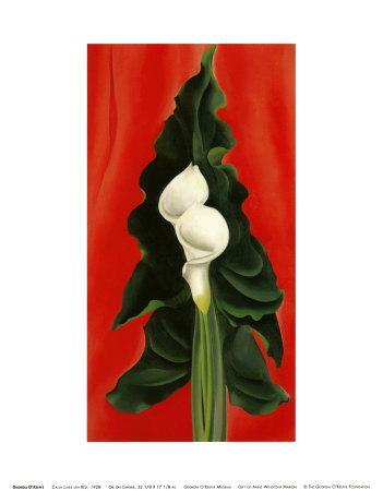 https://imgc.artprintimages.com/img/print/calla-lilies-on-red-1928_u-l-eqrqg0.jpg?p=0