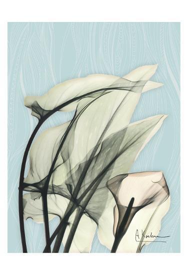 Calla Lily Leaves-Albert Koetsier-Art Print
