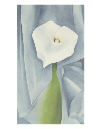 https://imgc.artprintimages.com/img/print/calla-lily-on-grey-1928_u-l-f8ika20.jpg?artPerspective=n