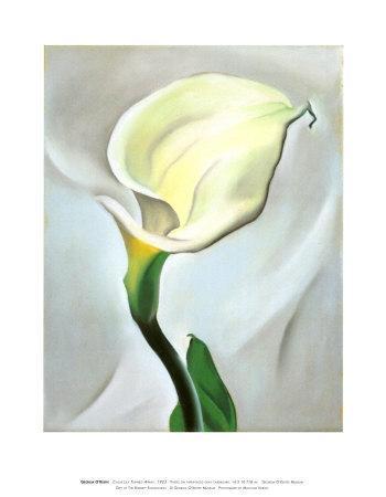 https://imgc.artprintimages.com/img/print/calla-lily-turned-away-1923_u-l-eqrq70.jpg?p=0