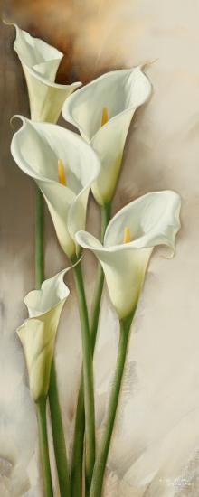 Callas Gracieux I-Igor Levashov-Art Print