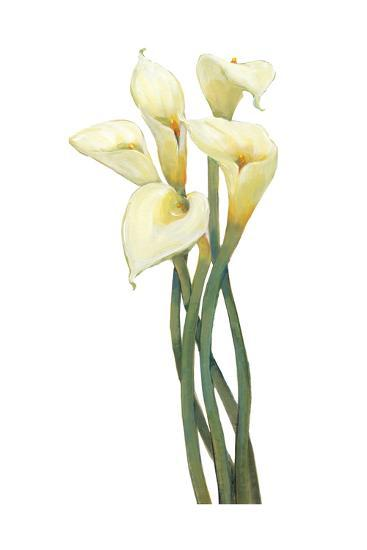 Callas on Silver I-Tim OToole-Art Print