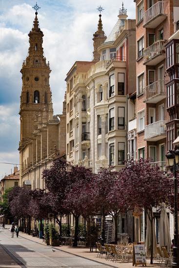 Calle Portales with Santa Maria De La Redonda Cathedral in Logrono, La Rioja, Spain, Europe-Martin Child-Photographic Print