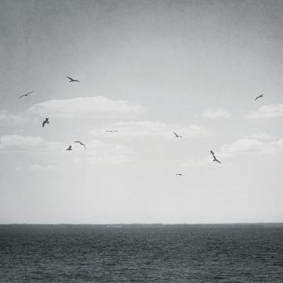 Calm Days IV BW Crop-Elizabeth Urquhart-Photo