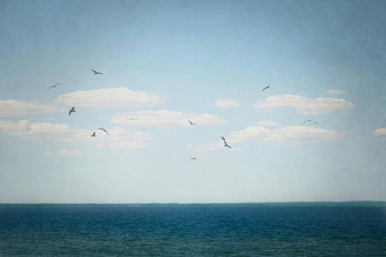 Calm Days IV Crop-Elizabeth Urquhart-Art Print
