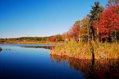 Calm Lake in New England, Connecticut, Usa-Sabine Jacobs-Photographic Print