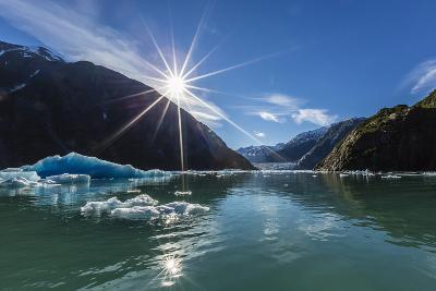 Calved Glacier Ice in Tracy Arm-Ford's Terror Wilderness Area-Michael Nolan-Photographic Print