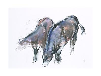 Calves, 2006-Mark Adlington-Giclee Print