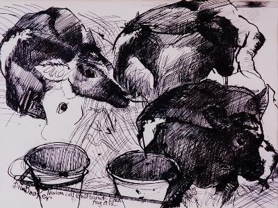Calves, Damp, Newborn, 1978-Brenda Brin Booker-Giclee Print